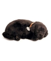 Pluche slapende labrador zwart