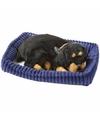 Pluche slapende rottweiler hond