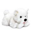 Pluche witte terrier hond 35 cm