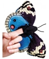 Pluche zwart blauwe vlinder vingerpop 22 cm