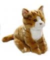 Rode zittende pluche kat 23 cm