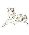 Witte tijger knuffel 103 cm