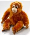 Zittende pluche knuffel orang oetan 20 cm