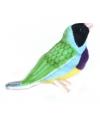 Zwart gekleurde gouldamadine vogel knuffel 11 cm